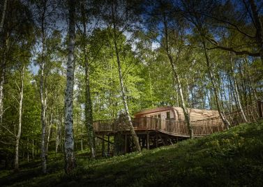 The Fish Treehouses and Huts