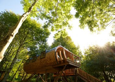 Pickwell Manor Tree Houses