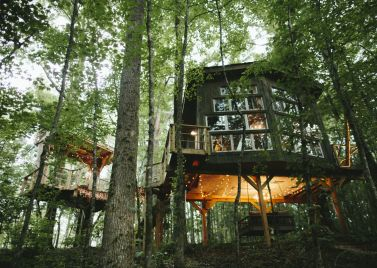 Woodland retreats and leafy locations | Host Unusual