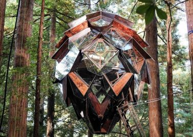 The Pinecone Treehouse