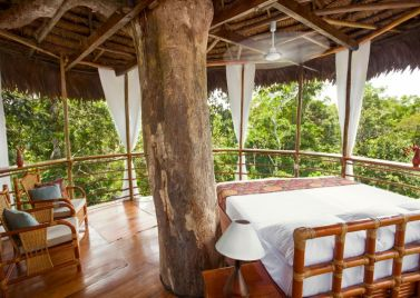 Treehouse Lodge Peru