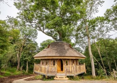 Thatch Treehouse