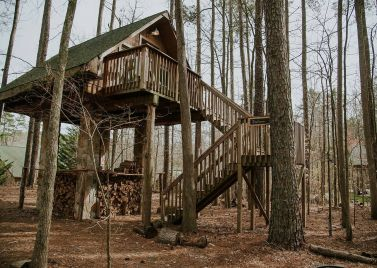 Concord Treehouse
