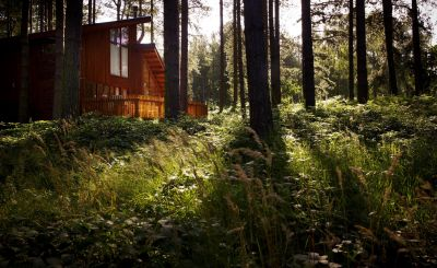 Time to recharge! Experience the fun and fresh-air adventures at Forest Holidays