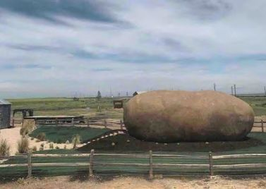 The Big Idaho Potato Hotel