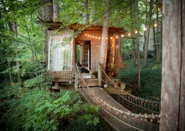 Intown Treehouse