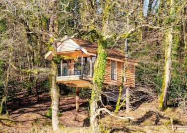 Yeworthy Eco Treehouse