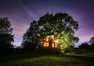 The Old Oak Treehouse
