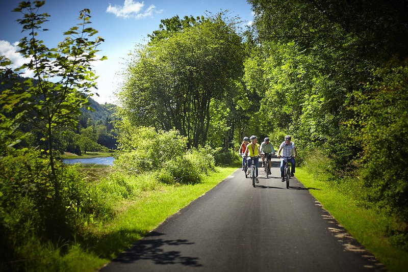 Activities-Forest-cycling.jpg