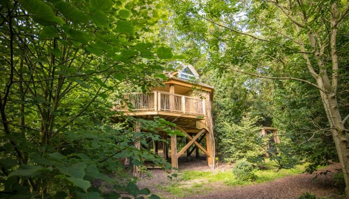 Blog-west-lexham-treehouse.jpg