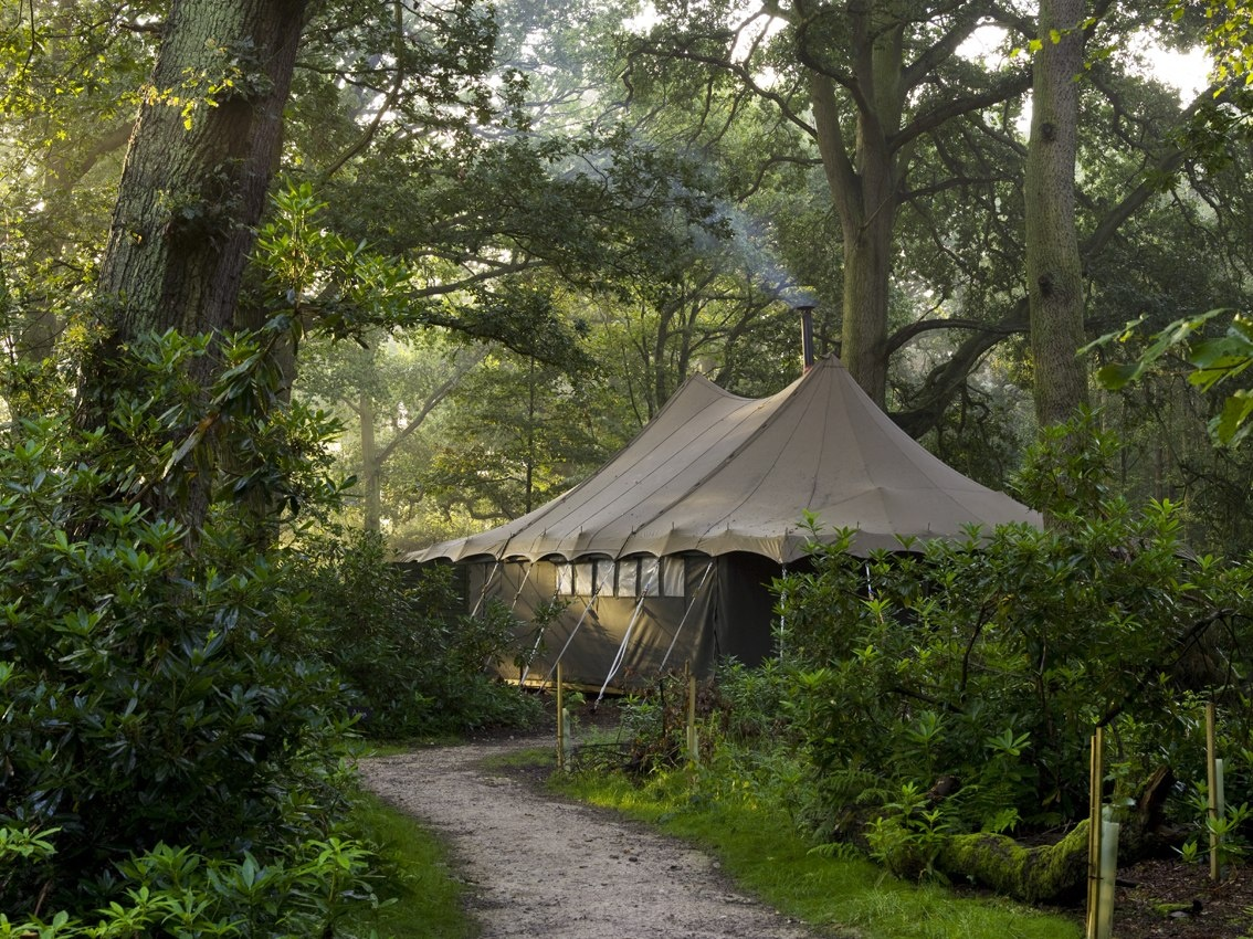 Jolly-Days-Glamping-lodge-woods.jpg