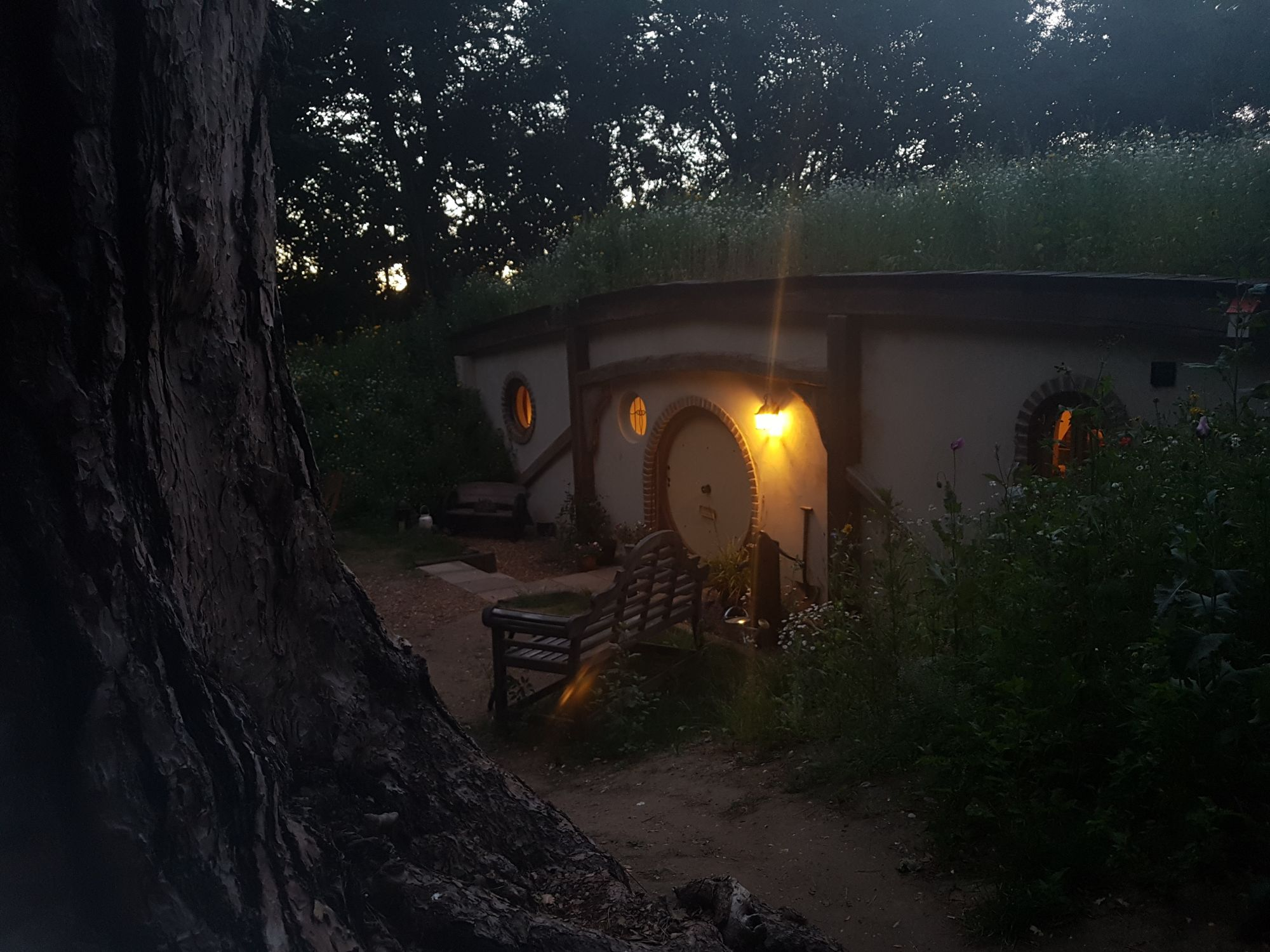 blog-hobbit-night.jpg